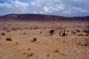 Oued Noun : Site ST-A3 : Photo ST95-A3_(4)